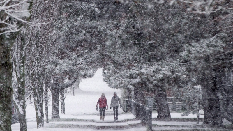 Pedestrians are framed by a canopy of trees as snow falls in Vancouver, B.C., on Dec. 9, 2016. (Darryl Dyck / THE CANADIAN PRESS)