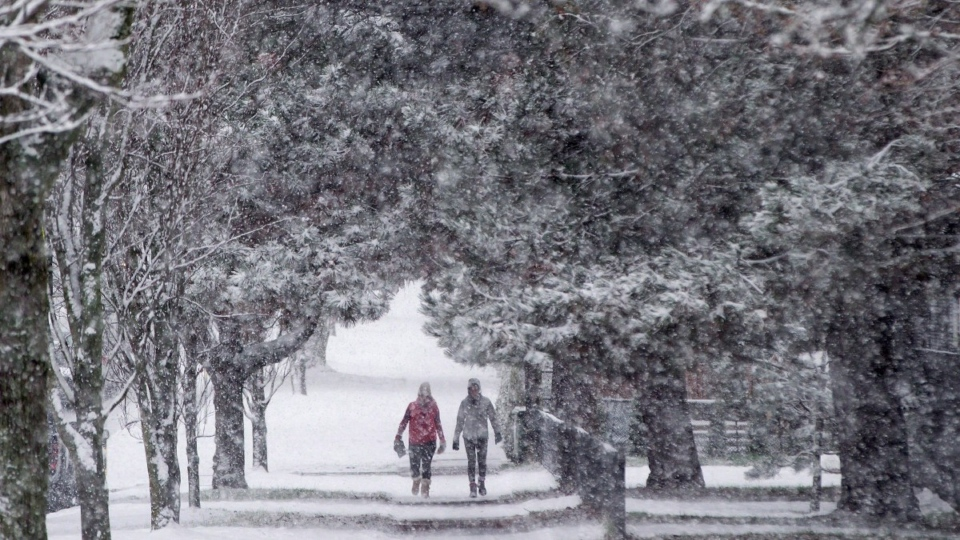 snow falls in Vancouver, B.C., in 2016