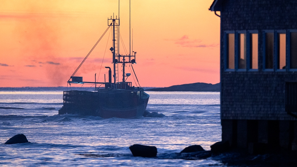 A boat loaded with traps heads from the harbour in West Dover, N.S. on Monday, Nov. 30, 2020 as the lucrative lobster fishing season on Nova Scotia's South Shore opens. (THE CANADIAN PRESS/Andrew Vaughan)