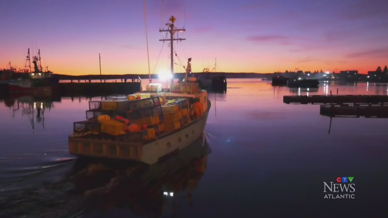 Weather delays some N.S. lobster dumps