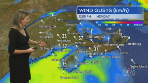 Weather warnings in some parts of Atlantic Canada