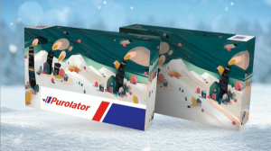 Mary Haasdyk's Purolator package