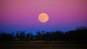 The Beautiful Full Beaver Moon near Hartney Manitoba. Photo by Dylan Bertholet.