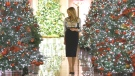 Melania Trump unveils White House holiday decorati