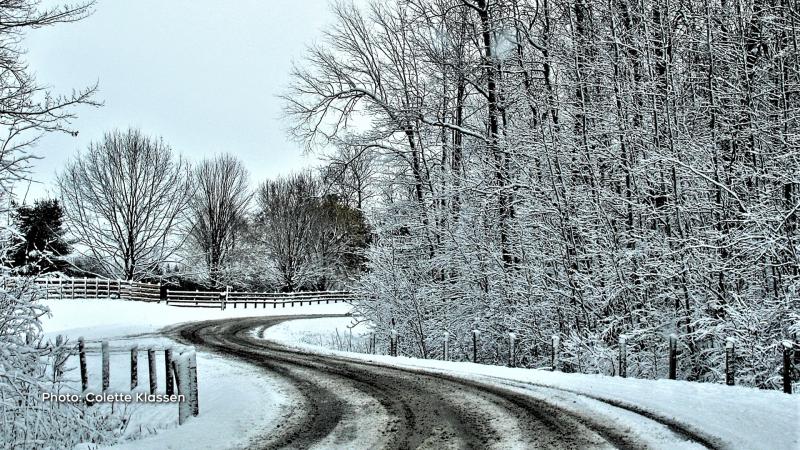 Wintery scene. (Colette Klassen/CTV Viewer)