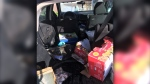 """The B.C. Conservation Officer Service says a bear broke into a Terrace resident's car to get at freshly picked fruit back in September and had a """"bit of a heyday"""" inside."""
