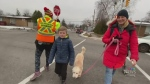 Whistle added to crossing guard safety gear