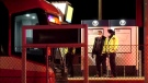 Traffic was disrupted in northeast Calgary Monday evening when a pedestrian was struck by a CTrain