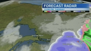Snowfall warnings bringing up to 30 cm of snow with high winds for many in northeastern Ont., Will Aiello has details in the full forecast.