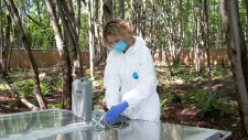 Dr. Shari Forbes works at the Becancour REST facility (Photo: UQTR)