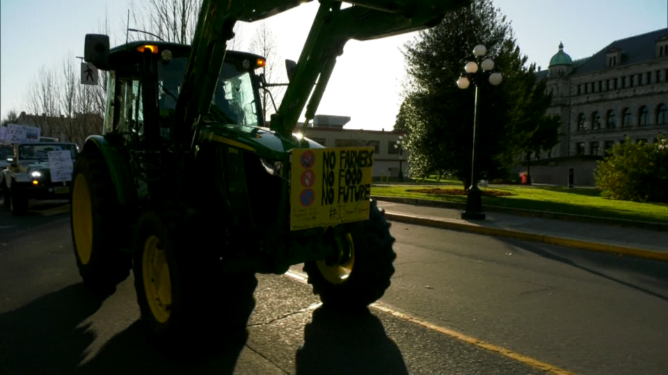 A convoy drives through Victoria, B.C. on Dec. 1, 2020 to protest the Indian government's response to a massive demonstration of farmers.