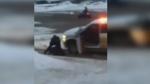 CTV National News: RCMP inquest investigation