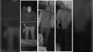 Chatham-Kent police are seeking the public's assistance in identifying these suspects. (courtesy Chatham-Kent police)