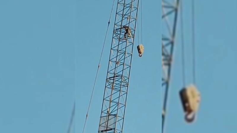 A screenshot from a Facebook video streamed by Jackie Traverse shows a person scaling a crane in Downtown Winnipeg near Graham Avenue and Kennedy Street on December 2, 2020 (Image source: Jackie Traverse)