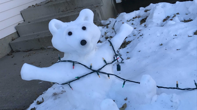 A St. Albert artist, who asked to remain anonymous, has been making all kinds of creatures with snow. Dec. 2, 2020. (Matt Marshall/CTV News Edmonton)