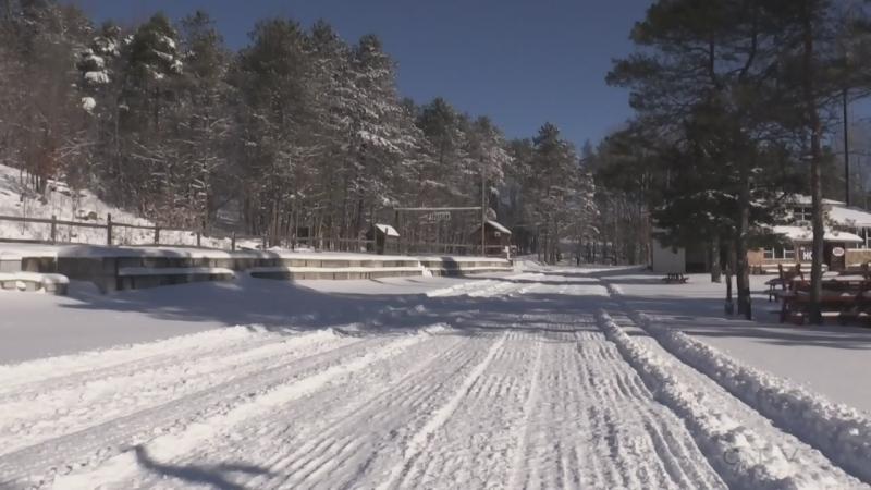 The trails at Hardwood Ski and Bike in Oro-Medonte, Ont. (Roger Klein/CTV News)