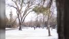 A winter shot in Winnipeg. (Source: Rosanna Hempel)