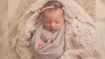 Baby embryo