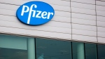 Two workers stand in a window at Pfizer Manufacturing in Puurs, Belgium, on Wednesday, Dec. 2, 2020. British officials authorized a COVID-19 vaccine for emergency use on Wednesday, greenlighting the world's first shot against the virus that's backed by rigorous science and taking a major step toward eventually ending the pandemic. (AP Photo/Virginia Mayo)