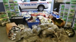 Police in Durham Region have seized more than $2 million in cannabis and cash following a months-long drug trafficking investigation. (Supplied)