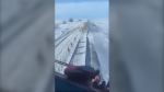 The video shows a large herd of animals running on the tracks as the freight train's horn blasts. (Facebook/Ira Redwood)