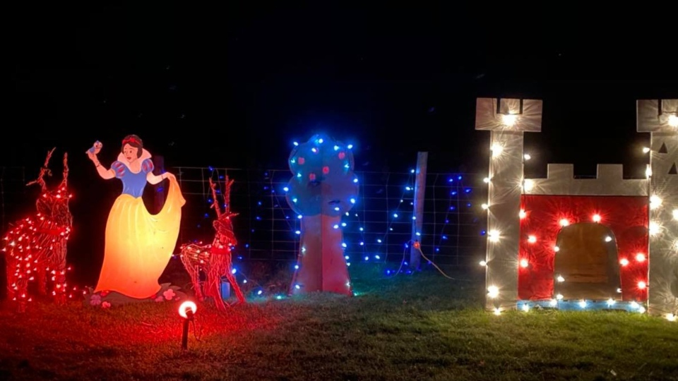 Hewitt's Farm Christmas Display in Coldwater, Ont.