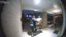 Caught on Cam: Package thieves in Kanata Lakes