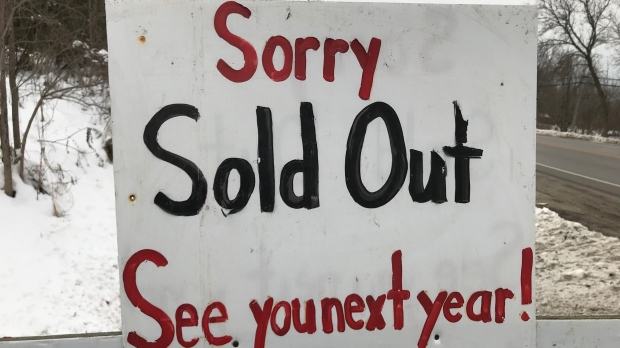 Quesnel Tree Farm in Nottawa posts a sold-out sign. (Rob Cooper/CTV News)