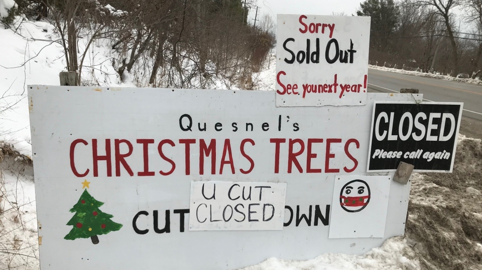 Quesnel's sold out of Christmas trees