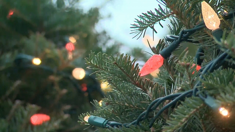 Check the map below for all the Greater Victoria region's most-decorated homes. (File photo)