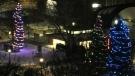 2020 Victoria Park Lighting of the Lights