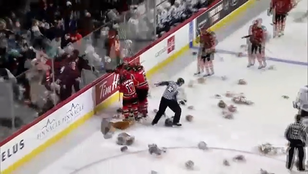 In past years, fans toss teddy bears onto the ice at a Hitmen game. This year, they will drive down Teddy Bear Lane and toss them out of their vehicle