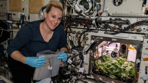 NASA astronaut and flight engineer Kate Rubins checks out radish plants growing on the space station as part of an experiment to evaluate nutrition and taste of the plants. (CREDIT: NASA via CNN)