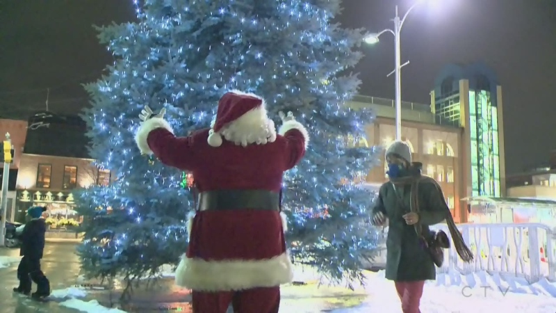 tree lighting waterloo