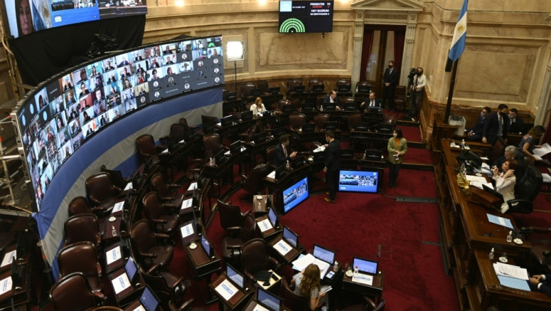The tax was passed after a long and polarizing debate in Argentina's Senate. (AFP)