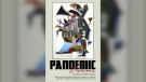 Pandemic Poems, an anthology containing work from poets across Canada, may be a text that future English teachers reach for when they want to explore the COVID-19 pandemic with their students. (Supplied)