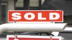 The average price of a home sold in Greater Victoria in February was roughly $1.16 million: (CTV News)