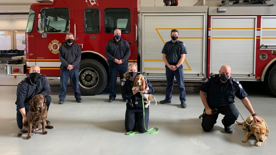 Firefighters with puppies from Phoenix Canine Init