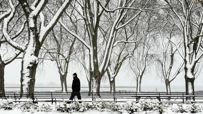 A person is seen walking through the snow covered trees near the boardwalk overlooking Lake Ontario in Toronto on Tuesday, December 1, 2020. THE CANADIAN PRESS/Nathan Denette