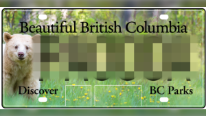 ICBC's 'Kermode bear' licence plate is shown.