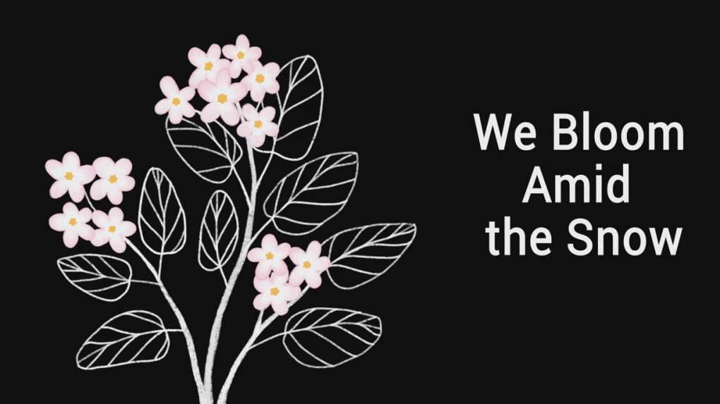 We Bloom Amid the Snow