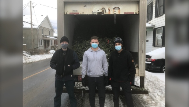 Kingston volunteers collect Christmas trees for charity