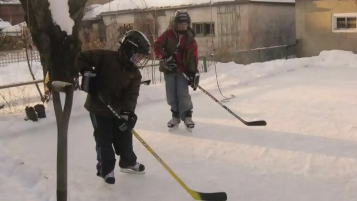 Backyard rink-building business