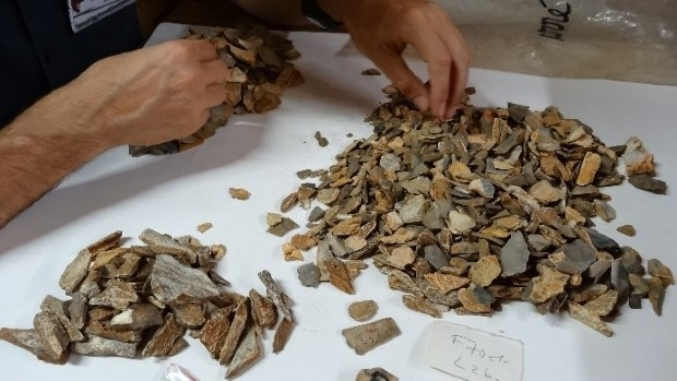 Examining material from the 1970s excavations
