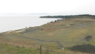 The future Royal Beach development site in Colwood is shown: Jan. 5, 2021 (CTV News)