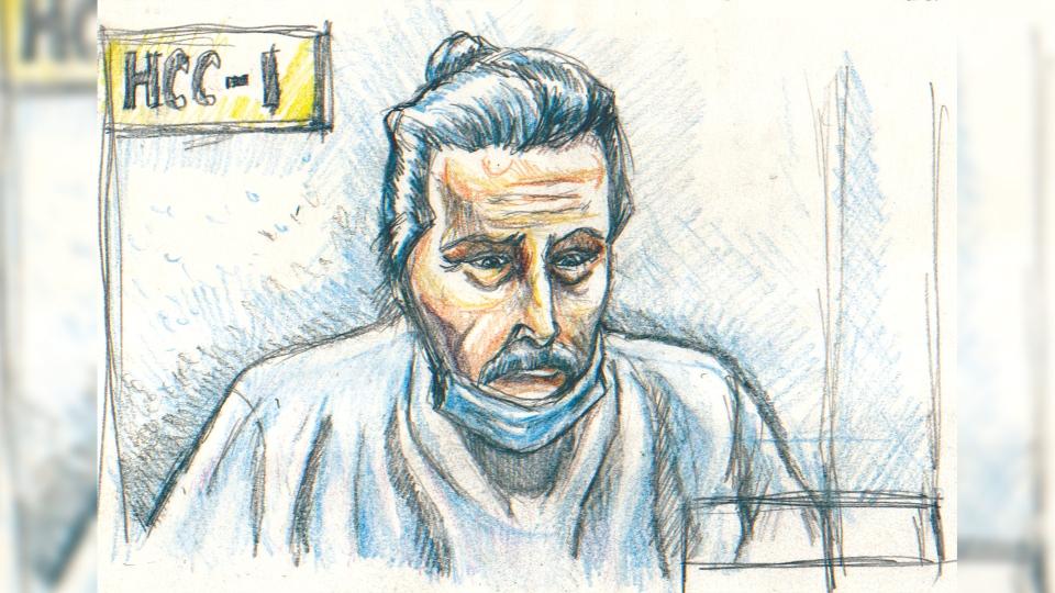 Peter Nygard court sketch