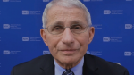 Speaking to BNN, Dr. Anthony Fauci describes the challenges of combating COVID-19 during an increasingly divided era in the U.S.