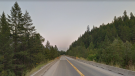 Highway 3 near Summit Creek Bridge, about 12 kilometres outside of Creston, B.C. (Google Maps)