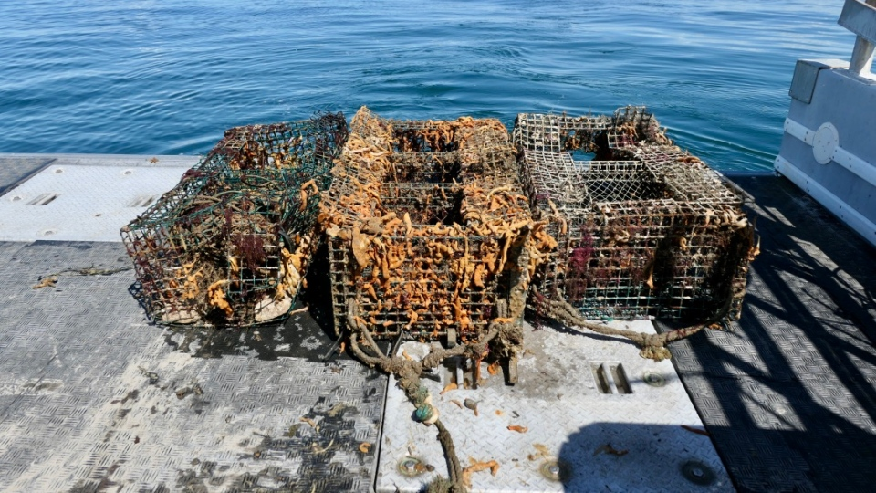Ghost gear recovery