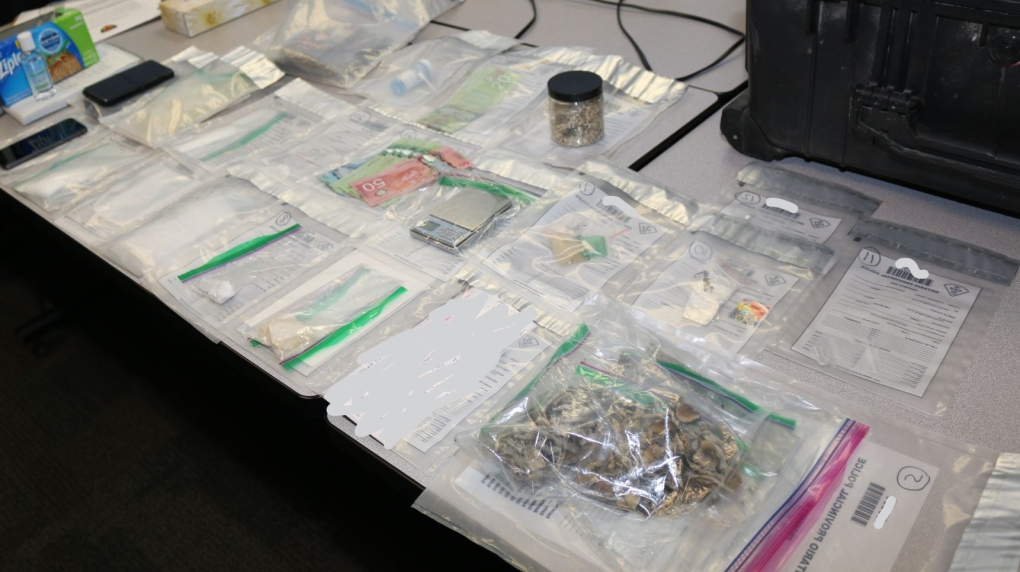 Drugs and cash seized in Watford, Ont.
